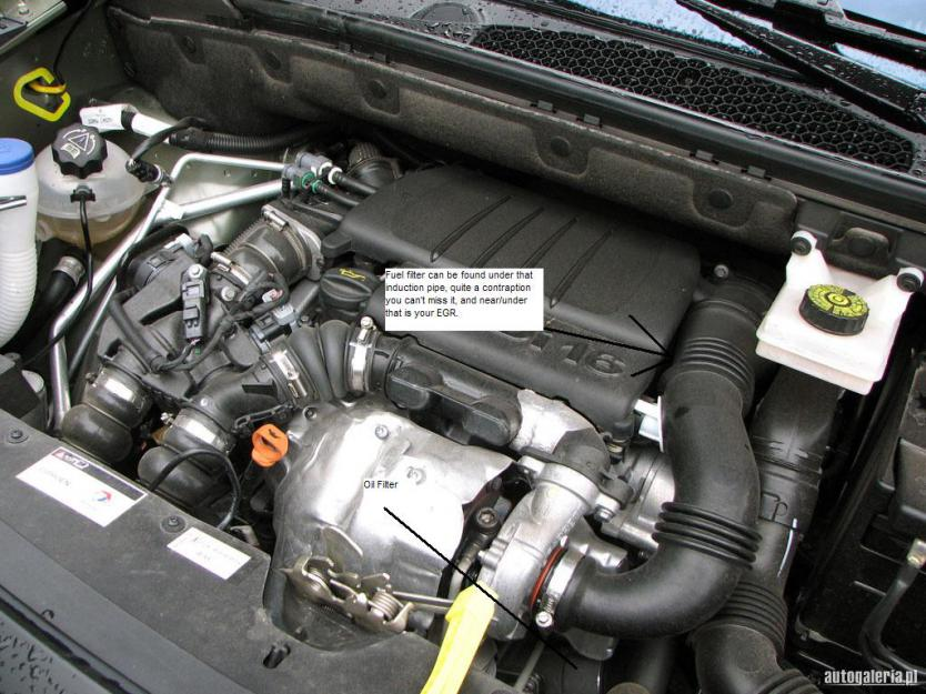 By Photo Congress || Peugeot 206 1 6 Hdi Fuel Filter Location
